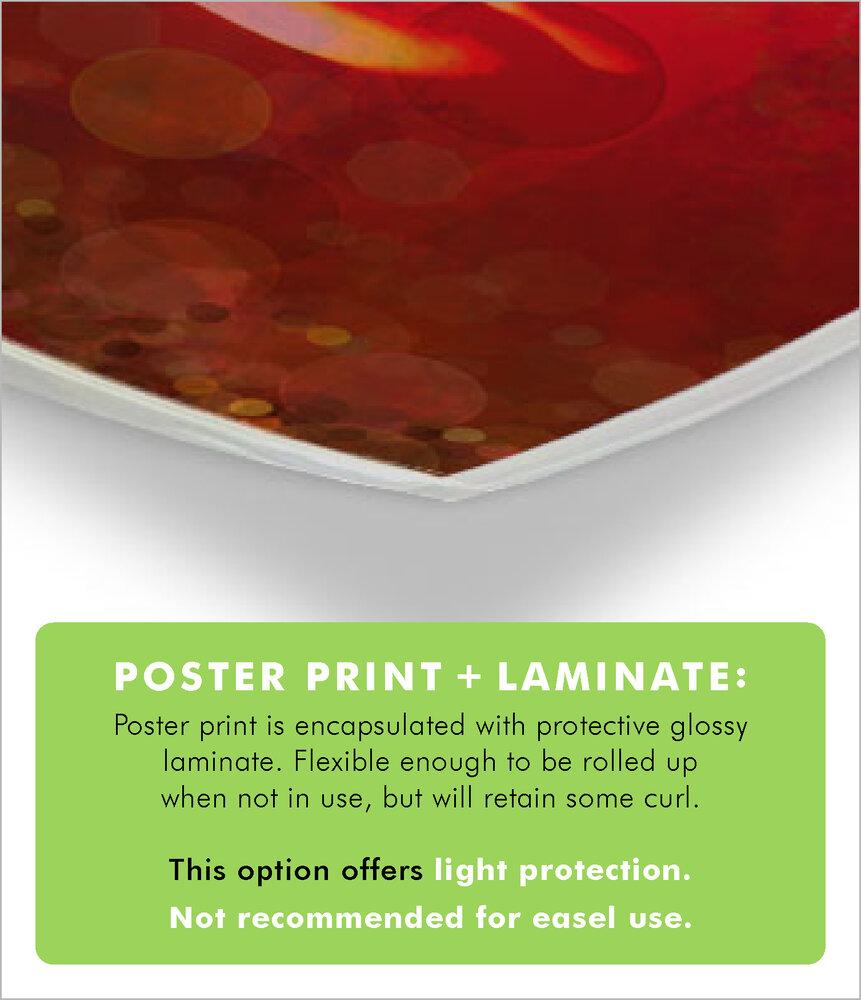 Poster Print + Laminate